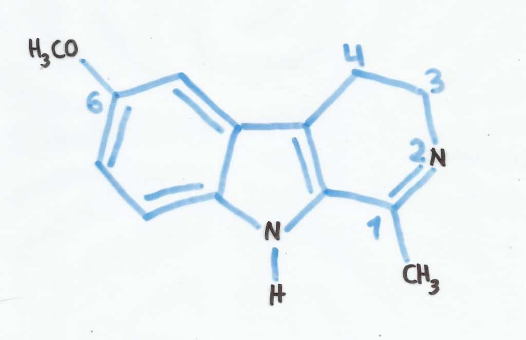6-MH hormone de la veille