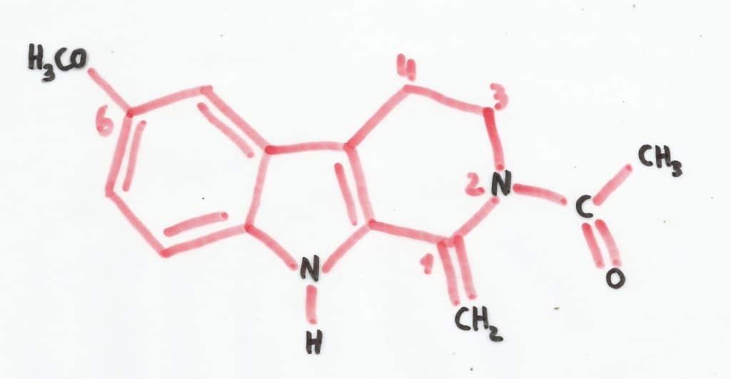 Valentonine Hormones du sommeil