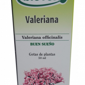 Valériane (Valeriana officinalis) BIOVER