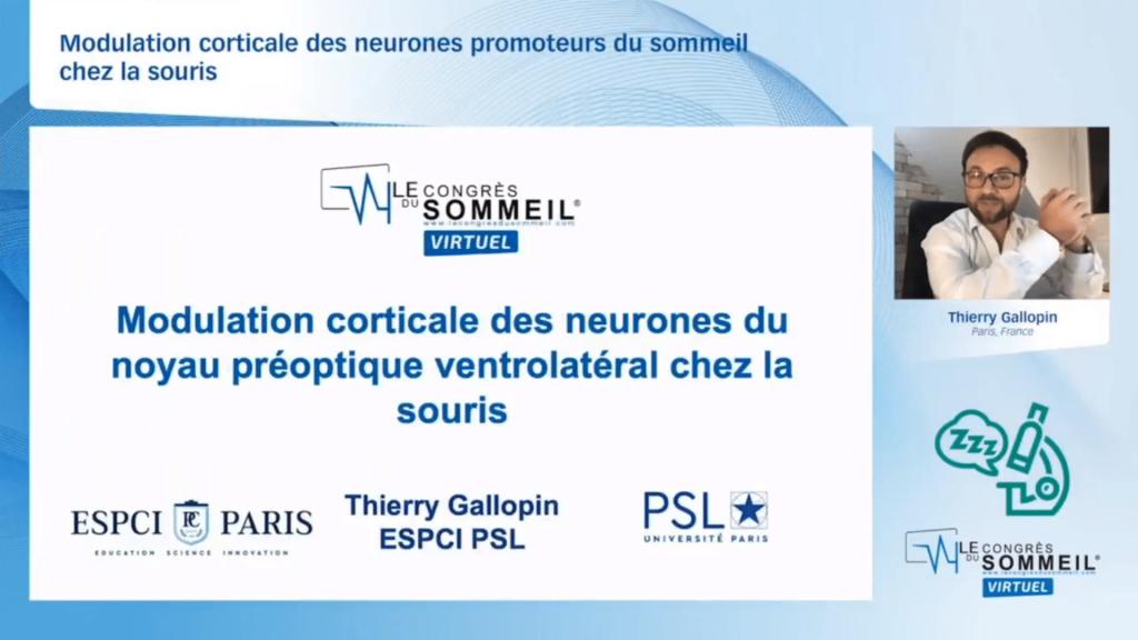 Modulation corticale des neurones promoteurs du sommeil chez la souris