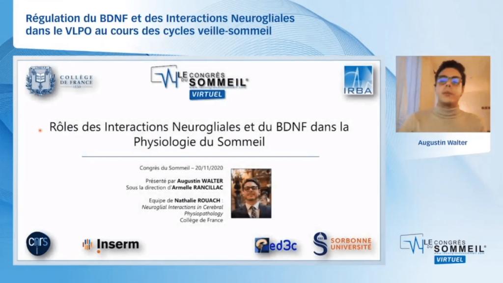 neurobiologie et hypersomnolence Régulation du BDNF et des Interactions Neurogliales dans le VLPO au cours des cycles veille-sommeil